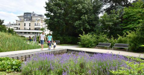 Jardin Paul et Virginie