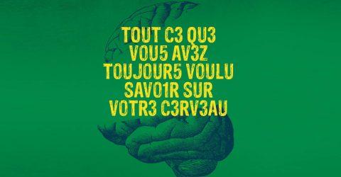 Tout ce que vous avez toujours voulu savoir sur le cerveau