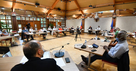 HDV Conseil Municipal 26052020 BSC38
