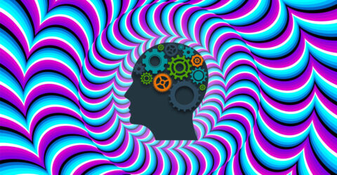 Cerveau macrovector official 2